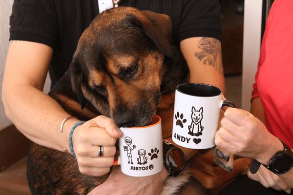 Una taza creativa y divertida