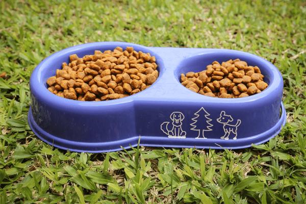Diamo da mangiare ai tuoi cani!
