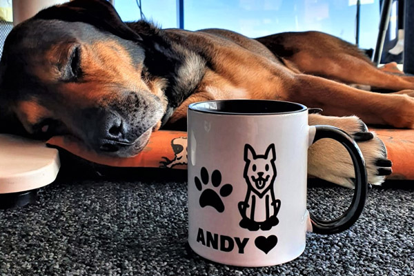 Our Favourite Pal enjoying his dog mug