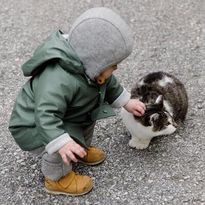 Le chat est le meilleur ami qu'on puisse avoir à la maison